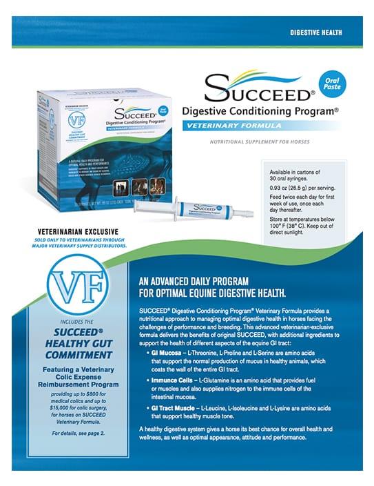 succeed-vf-flyer